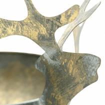 Cuenco con cabeza de reno metal dorado aspecto antiguo Ø14cm