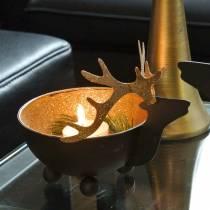 Cuenco con cabeza de reno negro, metal dorado Ø11 / 14cm juego de 2