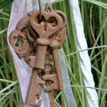 Llavero hierro fundido óxido 36cm 5 piezas