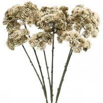 Sedum flor artificial sedum crema flor decoración otoño 70cm 3pcs