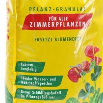 Gránulos de plantación Seramis® para plantas de interior (7,5 litros)