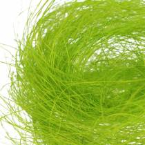 Hierba decorativa sisal primavera verde 500g