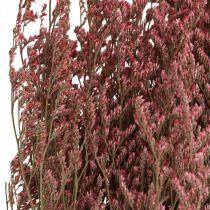 Flores secas de lavanda de mar rosa Statice tatarica 100g