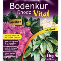 Bodenkur substral Rhodo-Vital 1 kg
