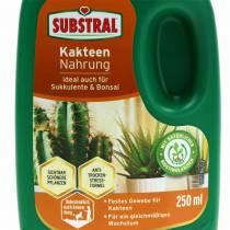 Fertilizante líquido substral cactus food 250ml