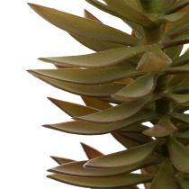 Rama suculenta marrón claro verde 48cm