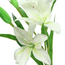 Lily blanco 58cm