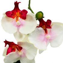 Decoración de mesa orquídea en maceta Al. 29 cm