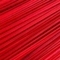 Tonkin rojo 70cm - 80cm 150p.