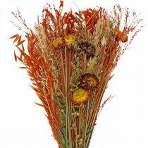 Ramo de flores secas naranja mezcla 42cm