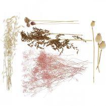 Caja Flores Secas Blanco-Rosa Mix Set Flores Secas