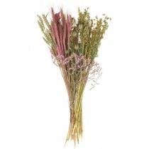 Set de bricolaje flores secas para ramo de flores secas rosas 60cm