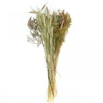 Set de bricolaje flores secas para secar ramo naturaleza 60cm