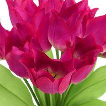 Tulip Bush Rosado L 30cm