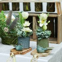 Jardinera maceta decorativa verde, marrón Ø10cm H10cm juego de 2