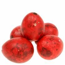 Huevos de codorniz rojo 60p