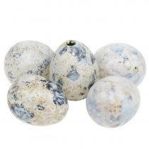 Huevos de codorniz jaspeado blanco 3,5cm - 4cm 60pcs