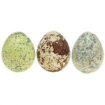 Surtido de huevos de codorniz verde, natural 3cm 72ud