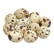 Huevos de codorniz natural 3-3.5cm 12pcs