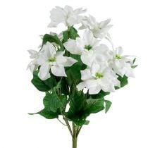 Poinsettia Ramo Blanco L45cm