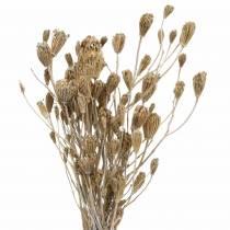 Ramo de flores silvestres, milenrama natural, blanco lavado 30–60 cm 150 g