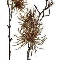 Bruja avellana oro con brillo 50cm