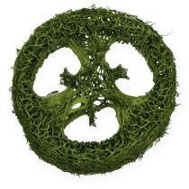 Las rodajas de esponja vegetal se clasifican. Verde, blanco 5-7.5cm 24pcs