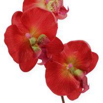 Orquídea decorativa roja 68cm
