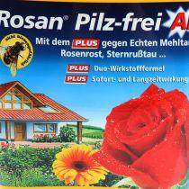 Etisso Rosan sin hongos AF 750 ml