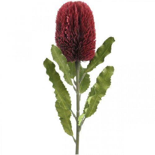 Flor Artificial Banksia Rojo Borgoña Artificial Exotics 64cm