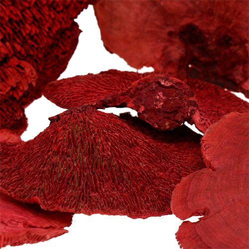Esponja de árbol roja 1kg