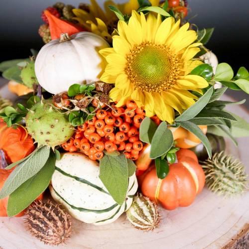 Mezcla de calabaza de decoración de otoño 12 piezas