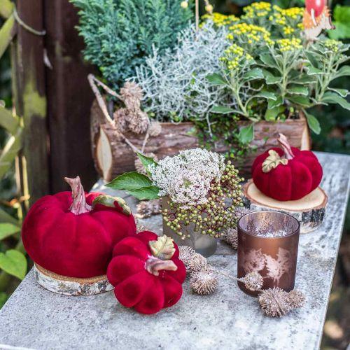 Decoración de otoño rojo calabaza deco polyresin 15 × 12cm