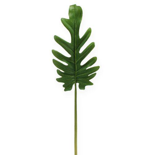 Láminas decorativas Philodendron Green B11cm L34cm 6pcs