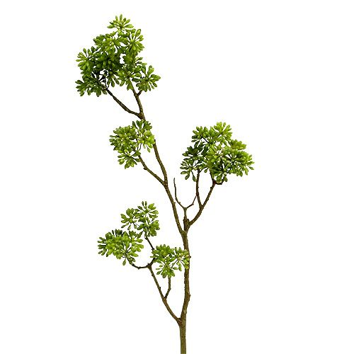 Deco rama verde 80cm