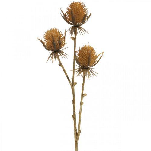 Rama de cardo planta artificial marrón decoración de otoño 38cm