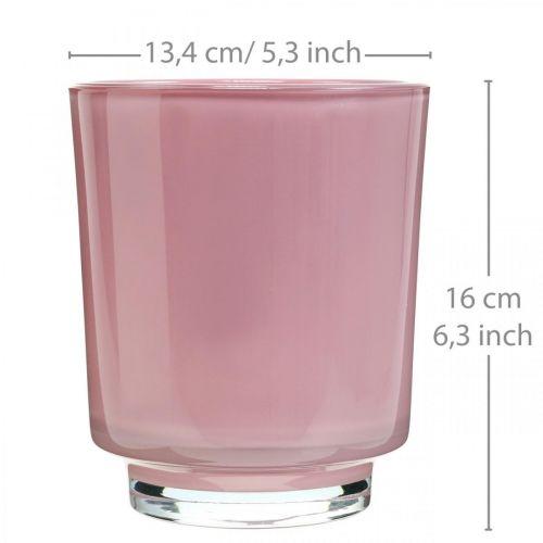 Jardinera de vidrio, maceta de orquídeas, jarrón decorativo rosa H16cm Ø13.4cm
