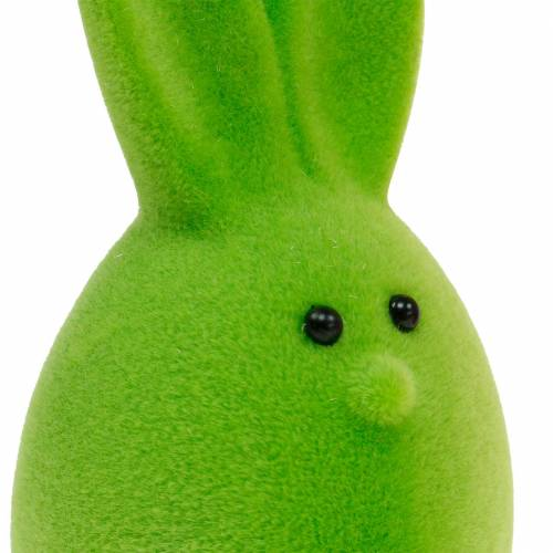 Mezcla de huevos de Pascua con orejas, huevos de conejo en bandada, decoración colorida de Pascua 6 piezas