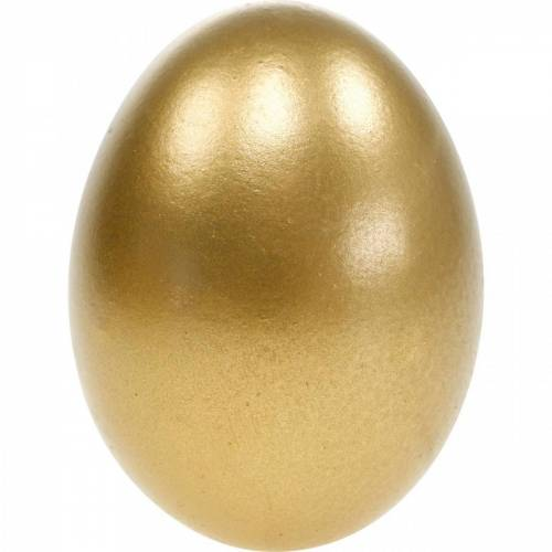 Huevos De Pollo Huevos Soplados Decoración De Pascua Diferentes Colores 10pcs