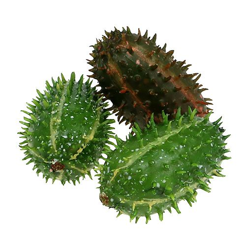 Higo chumbo 5cm Verde-Marrón 6pcs