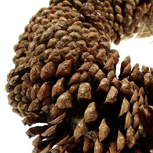Piñas de pino de Ø27cm