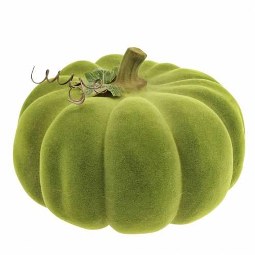 Calabaza decorativa flocada verde musgo 32cm