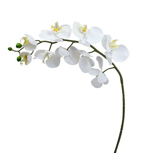 Polilla orquídea 75cm blanco