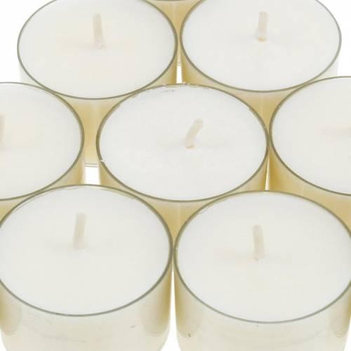 PURE Nature Lights velas de té cera de colza tiempo de combustión natural 7 horas 18h