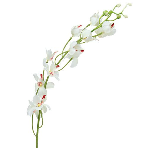 Orquídea Mokara Blanco 92cm 3pcs