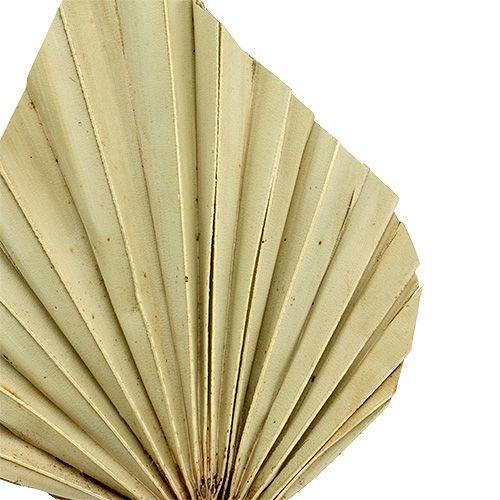Palmspear mini nature 100 piezas