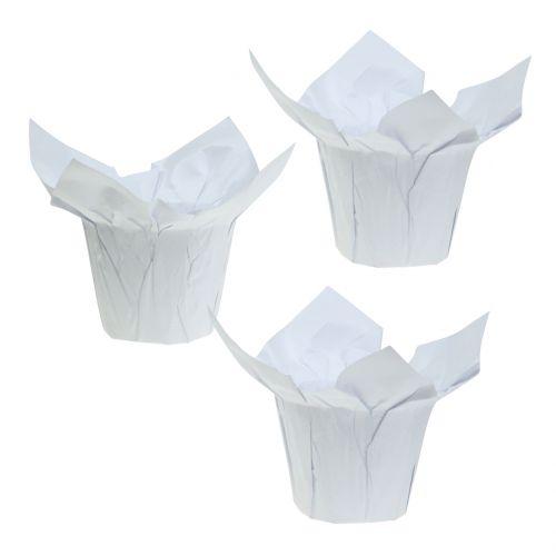 Maceteros de papel blanco Ø10cm 12pcs