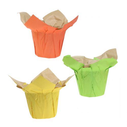 Macetas de papel verde, naranja, amarillo Ø8cm 12pcs