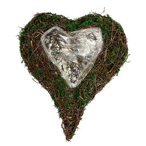 Corazón de planta como base de arreglo 30x35cm H8cm
