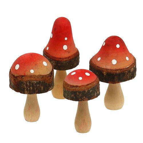 Mezcla de champiñones de madera 5,5cm - 8cm 8pcs
